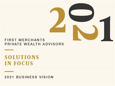 The Long View 2021 Business Vision Solutions in Focus graphic